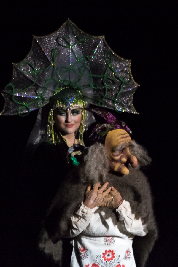 Images of the evil witch and the princess. Russian epic
